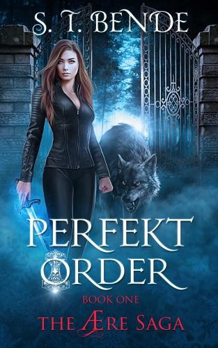 Perfekt Order (The Ære Saga Book 1) - ST Bende - ST Bende