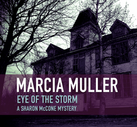Eye of the Storm book