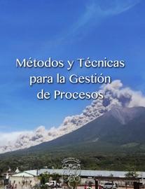 Metodos Y Tecnicas Para La Gestion De Procesos
