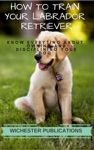 How To Train Your Labrador Retriever Know Everyting About Owning And Disciplining Your Dog
