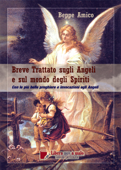 Breve trattato sugli angeli e sul mondo degli spiriti Book Cover