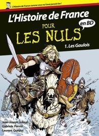 Histoire De France En Bd Pour Les Nuls Tome 1
