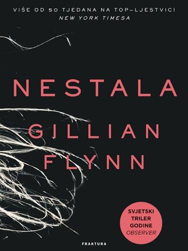 Gillian Flynn - Nestala