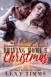 Driving Home for Christmas - Lexy Timms book summary