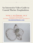 An Interactive Video Guide to Coastal Marine Zooplankton