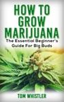 How To Grow Marijuana  The Essential Beginners Guide For Big Buds