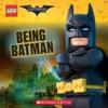 Being Batman The LEGO Batman Movie 8x8