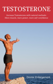 Testosterone: Increase Testosterone with Natural Methods - More Muscle, More Power, More Self-Confidence