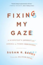 Fixing My Gaze book