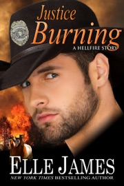 Justice Burning PDF Download