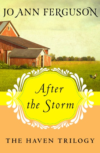Jo Ann Ferguson - After the Storm