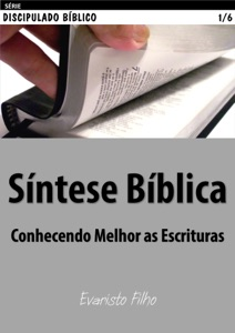 Síntese Bíblica Book Cover