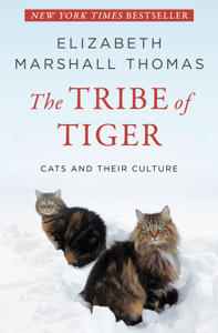 The Tribe of Tiger Book Cover