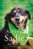 Joal Derse Dauer & Elizabeth Ridley - Saving Sadie artwork