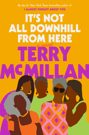 It's Not All Downhill From Here - Terry McMillan