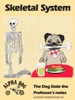 Skeletal System: The Dog Stole The Professor's Notes
