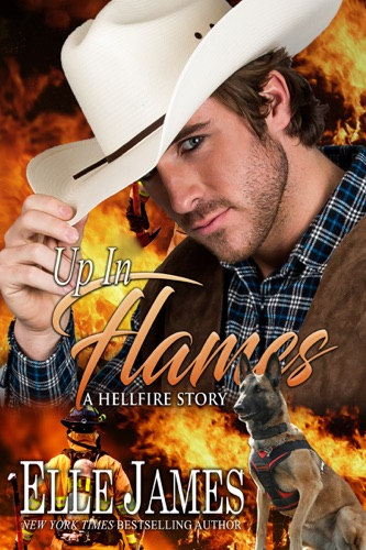 Elle James - Up In Flames