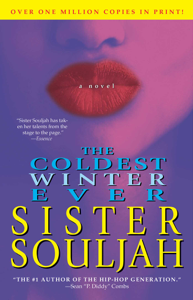 The Coldest Winter Ever Book Cover