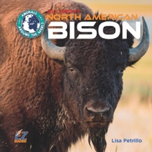 All About North American Bison