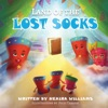 Land of the Lost Socks