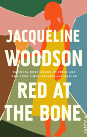 Red at the Bone PDF Download