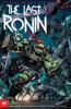 Kevin Eastman, Peter Laird, Tom Waltz, Esaú Escorza, Isaac Escorza & Ben Bishop - Teenage Mutant Ninja Turtles: The Last Ronin #2 artwork