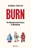 Herman Pontzer - Burn artwork
