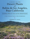 A Guide To The Desert Plants Of Bahia De Los Angeles Baja California