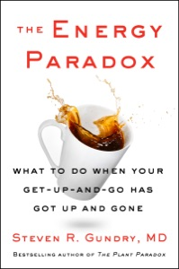 The Energy Paradox Book Cover
