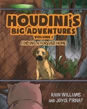 Download Houdini's Big Adventures