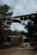 Exiles Under the Bridge