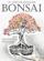El Arte de Estilizar Bonsai
