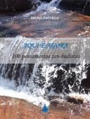 Aqui e Agora: 100 pensamentos zen-budistas Book Cover