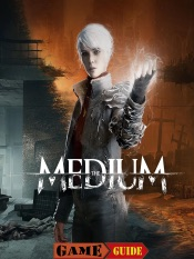 Download and Read Online The Medium Guide