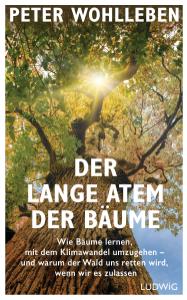 Der lange Atem der Bäume