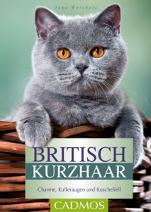 Britisch Kurzhaar Buch-Cover