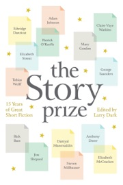 The Story Prize PDF Download