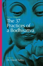 The 37 Practices Of A Bodhisattva