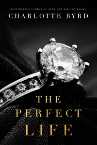 The Perfect Life Book Cover