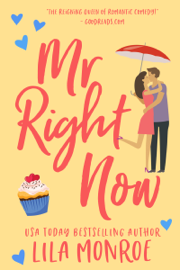 Mr Right Now book