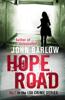 John Barlow - Hope Road artwork