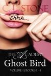 Ghost Bird The Academy Omnibus Part 1