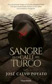 Sangre en la calle del Turco Book Cover