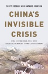 Chinas Invisible Crisis
