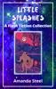 Little Splashes: A Flash Fiction Collection