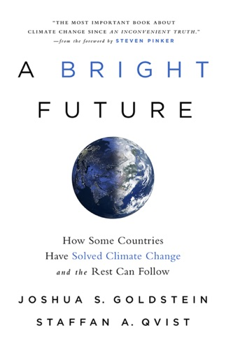 Joshua S. Goldstein, Staffan A. Qvist & Steven Pinker - A Bright Future