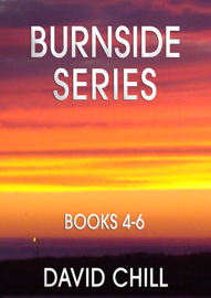 The Burnside Mystery Series, Box Set #2 (Books 4-6) - David Chill book summary