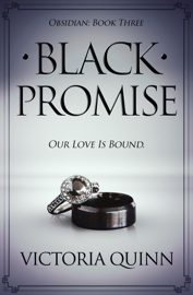 Black Promise book