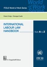 International Labour Law Handbook