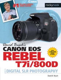 DAVID BUSCHS CANON EOS REBEL T7I/800D GUIDE TO DIGITAL SLR PHOTOGRAPHY